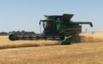 Wheat-harvest-2020.jpg