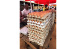 Eggs-from-Malawi-in-local-market-Mozambique.JPG.jpg