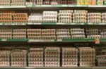 Grocery-store-eggs