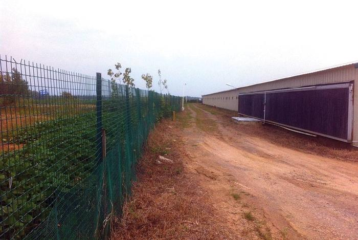 Perimeter-fence-Cargill-China-poultry-farm.jpg