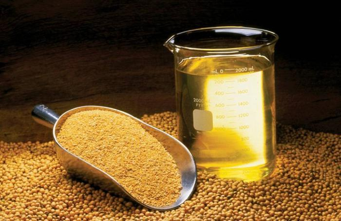 soybeans-meal-oil.jpg
