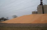 corn-grain-bins.jpg
