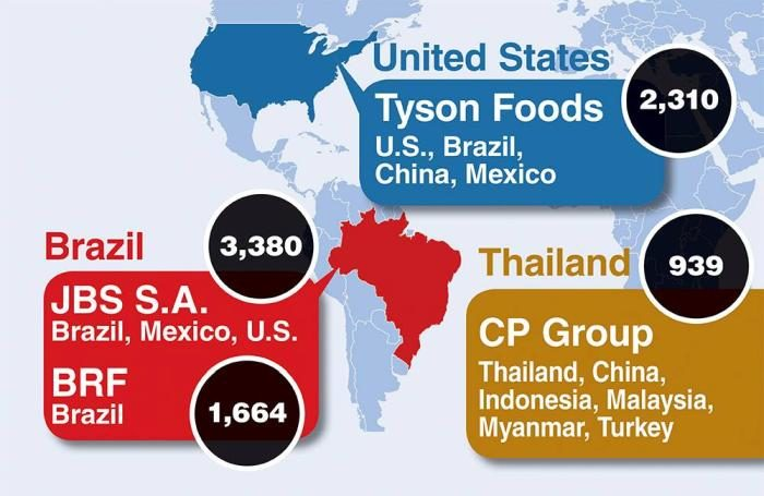 infographic  world u0026 39 s 5 largest poultry