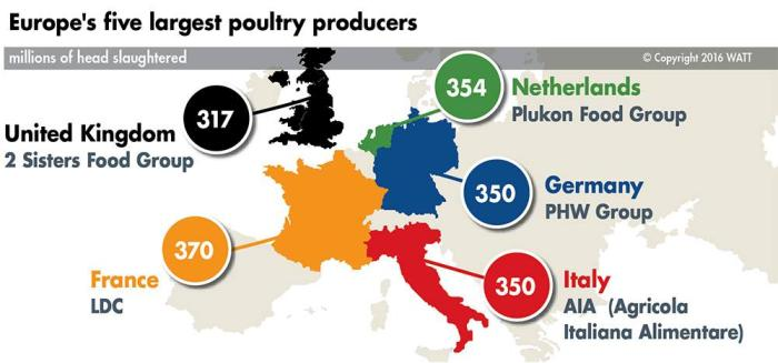 The 5 largest poultry, egg producers in Europe | WATTAgNet