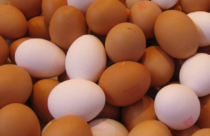Egg_production-1000jpg