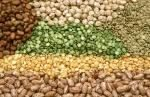different-pulses-seeds