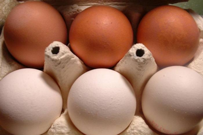 White-eggs-brown-eggs-1603