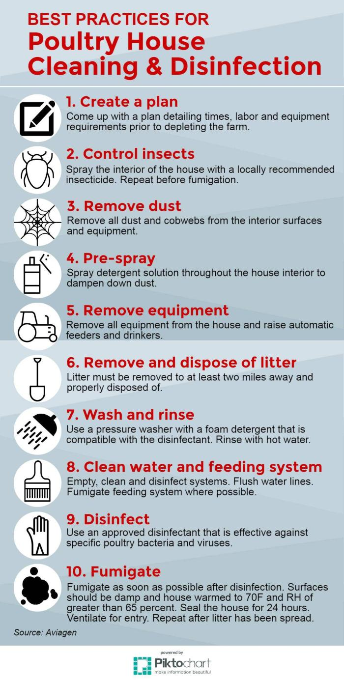 INFOGRAPHIC: Best Practices For Poultry House Cleaning And