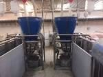 precision sow feeders