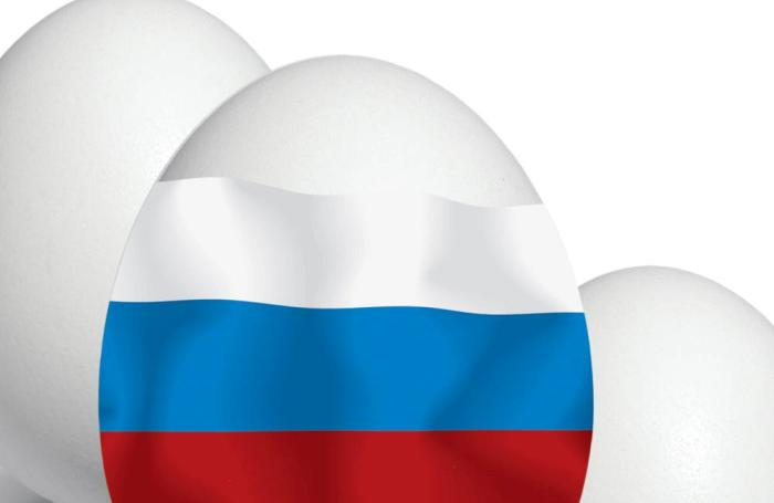 Top 8 Russian egg companies