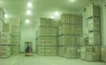 cooler-1608PIpoultryprocessing1.jpg