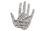 antibiotics in animal feed