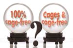 Is it futile to try and preserve cage-housing for hens in the US?