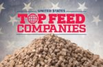 Feed top companies United States