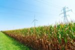 wind-turbine-corn.jpg