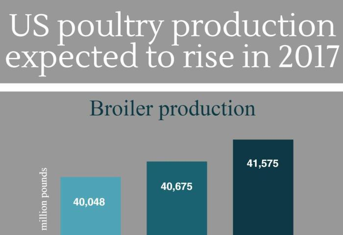 US-poultry-production-lightbox.jpg