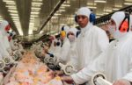 Brazilian poultry processing