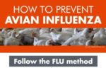 lightbox-flu-method-infographic.jpg