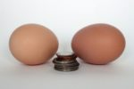 two-eggs-stack-of-coins.jpg