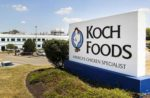 Koch-Foods-Hatchery
