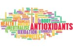 antioxidants in animal nutrition