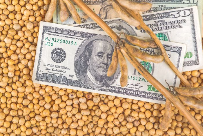 dollar-soybeans.jpg
