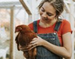 woman-with-red-shirt-holding-a-brown-hen