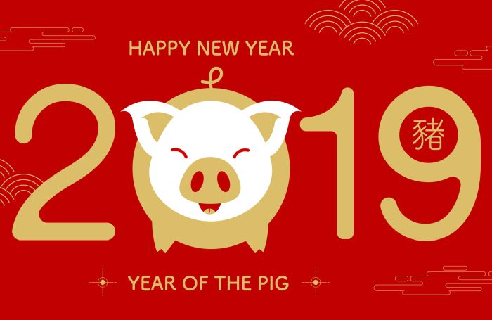 2019-year-of-the-pig