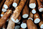 cassava-root-cut.jpg