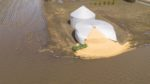 midwest-flooding-grain.jpg