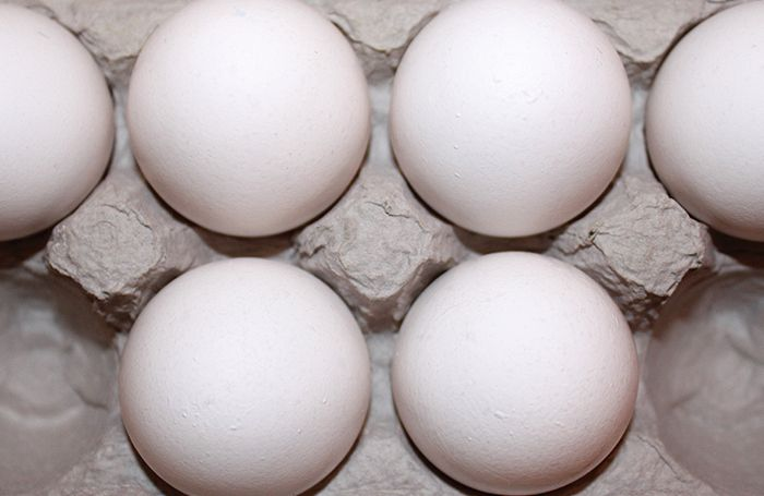 white-eggs-carton.jpg