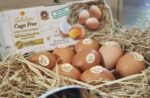 CP-Foods-Cage-free-eggs