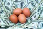 brown-eggs-money-nest.jpg