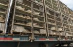 chickens-in-crates-on-truck