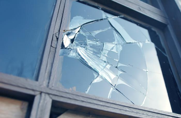 Animal-rights-broken-window