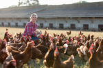 female farmer with chickens