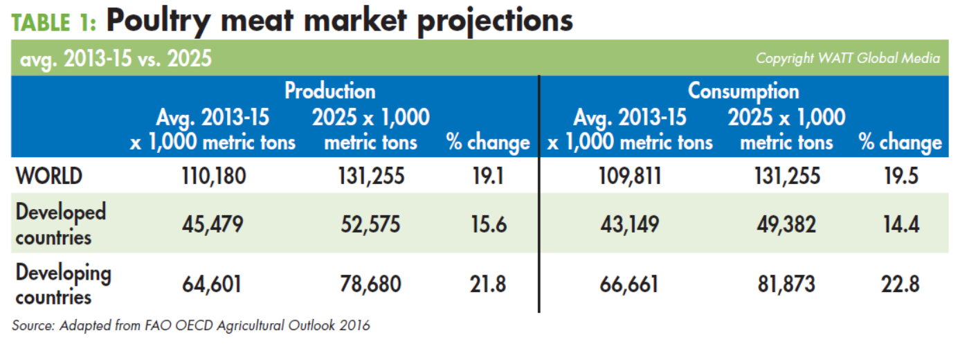 Poultry-meat-market-projections-avg-2013-15-to-2025