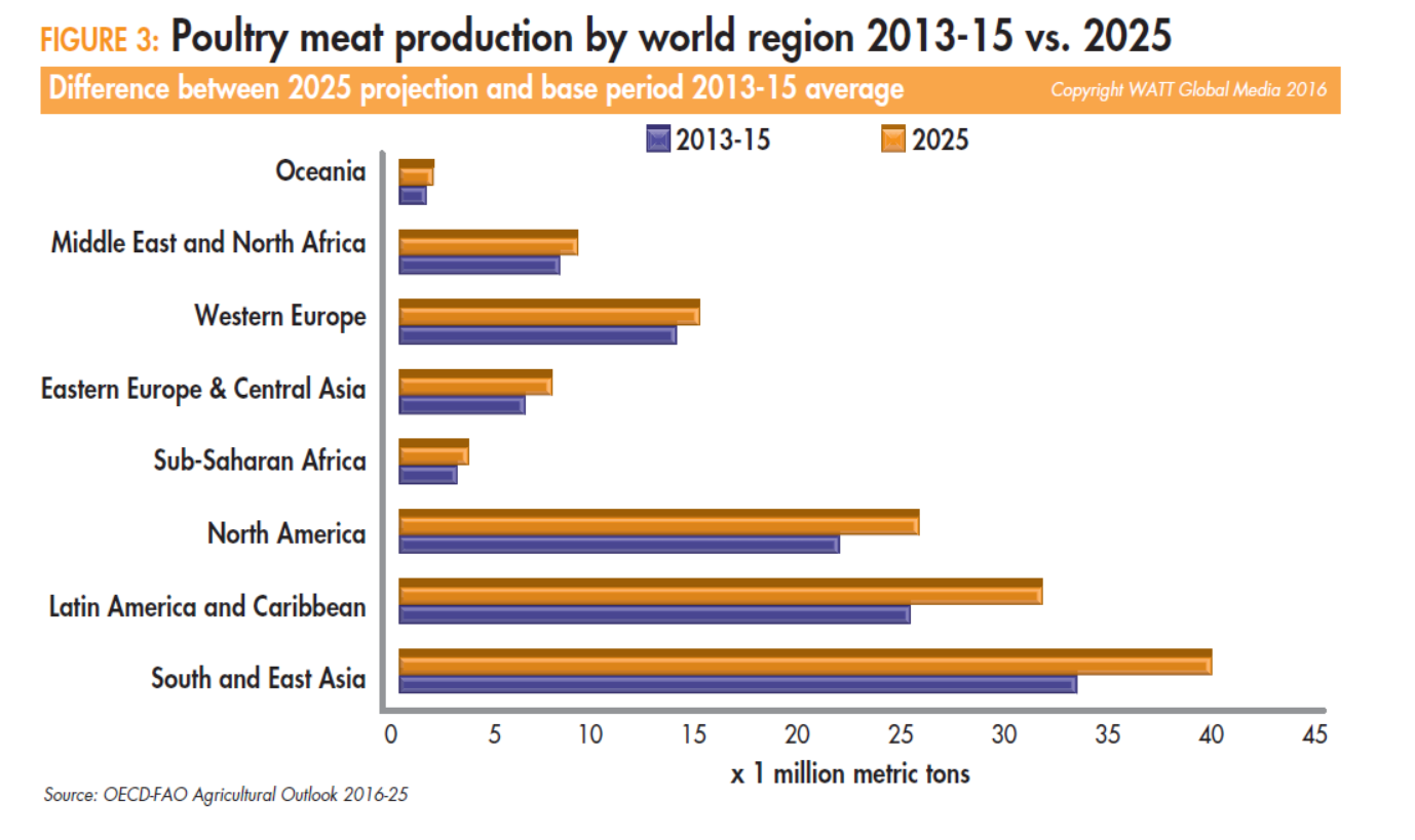 Poultry-meat-production-by-world-region-2013-15-vs-2025