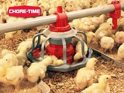 Chore-Time Revolution floor flood feeder
