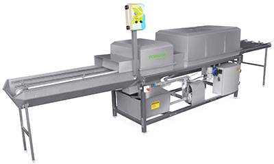 Fornari egg disinfection machine