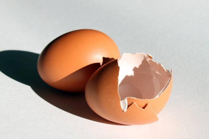 Broken-egg-shells