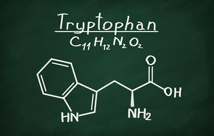 Structural-model-of-tryptophan-on-blackboard