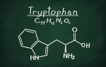 structural model of tryptophan on blackboard
