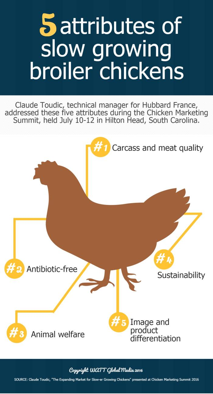 5 attributes of slow growing broiler chickens_INFOGRAPHIC