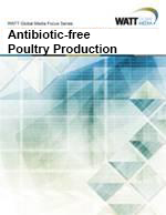 WATT Global Media Focus Series Vol. 1: Antibiotic-Free Poultry Production