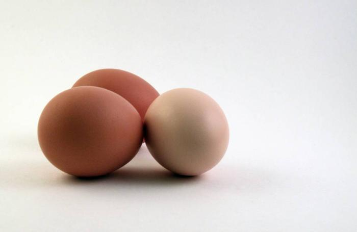 4 tips to improve eggshell resistance in aging layers