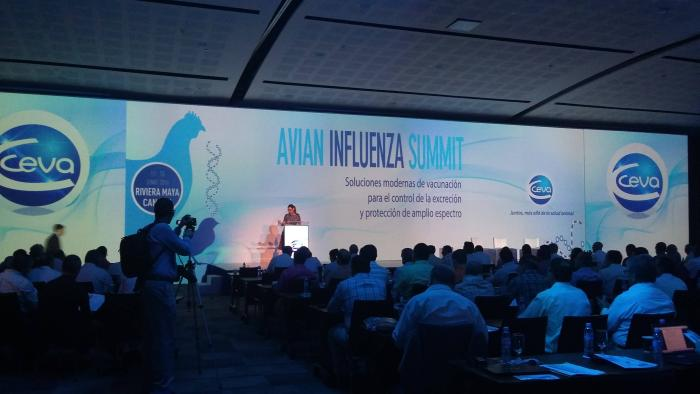 avian influenza summit