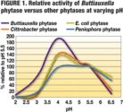 Buttiauxella-phytase-activity-1401FMAdditives1.jpg