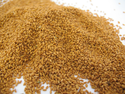 Camelina-seeds-1303PIGcamelinaoil.png