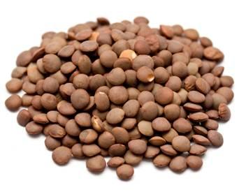 brown-lentils-1403PIGresearch